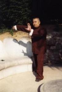 石明的纪念馆 第6代 杨式图片